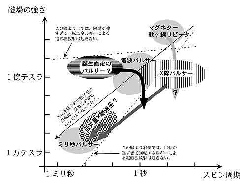研究紹介 2001.3 No.240