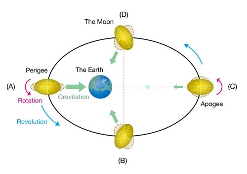 Pattern diagram of the Moon shape