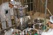 「すざく/ASTRO-EII」搭載のX線望遠鏡(XRT)